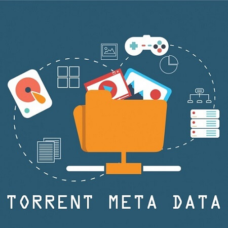 what is torrent meta data