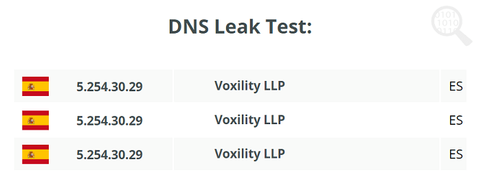 DNS-Leak-TheSafety.US