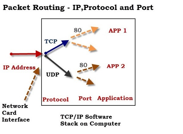 Understanding Differences between TCP and UDP